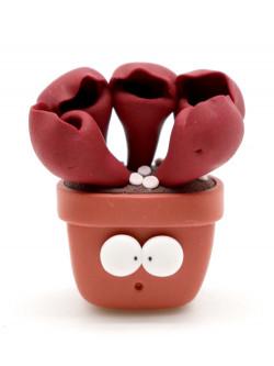Sarracenia purpurea MAGNETIC Obesini