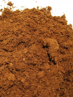 Estonian moss peat