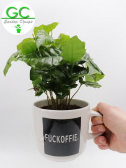"Coffee plant in large mug ""Fuckoffie"""