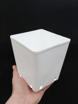 WHITE square pot 12 x 12 x 13 cm