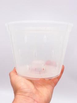 Vaso trasparente traforato 14 cm x 10,5 h
